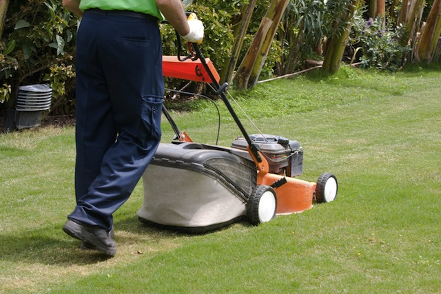 Top union services cleaning services car washing and for Garden cleaning services